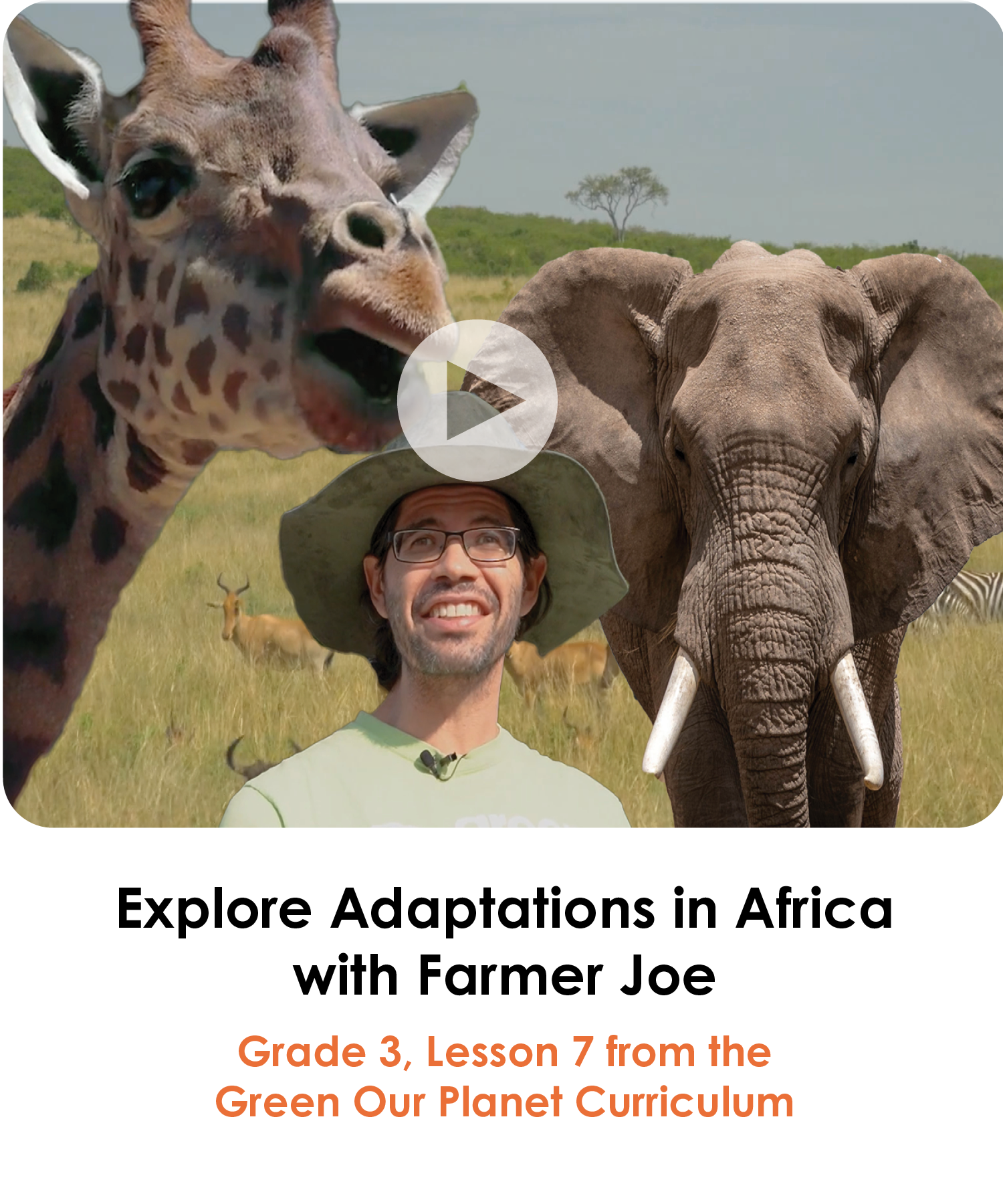 Explore Adaptations in Africa Grade 3 Lesson 7
