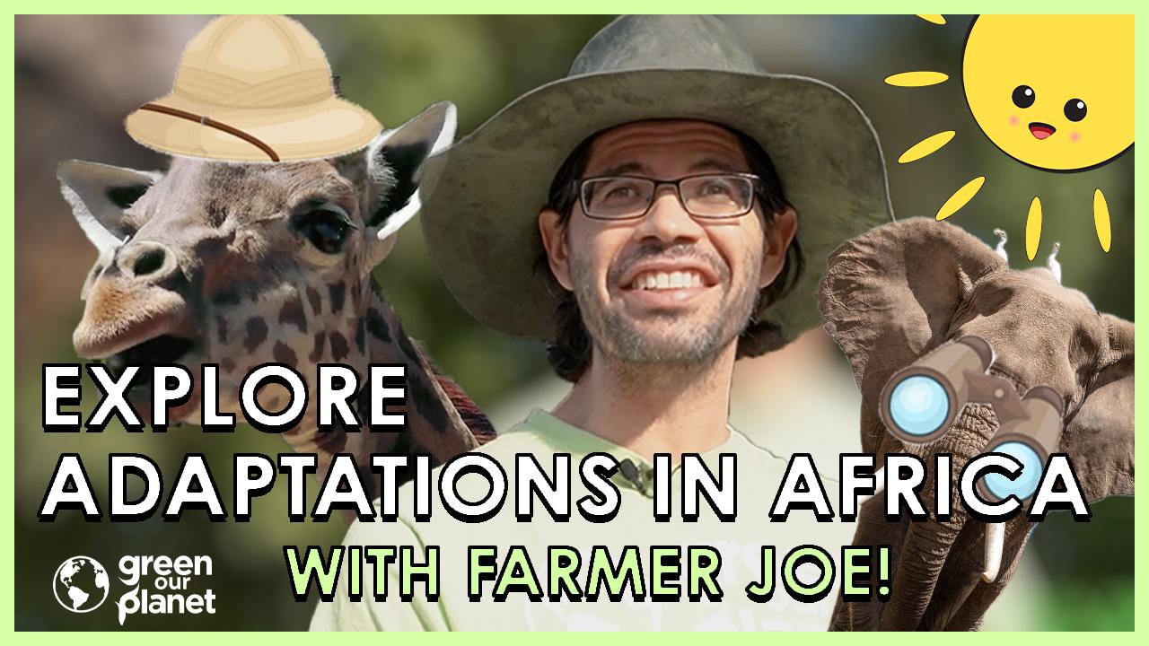 Explore Adaptations in Africa