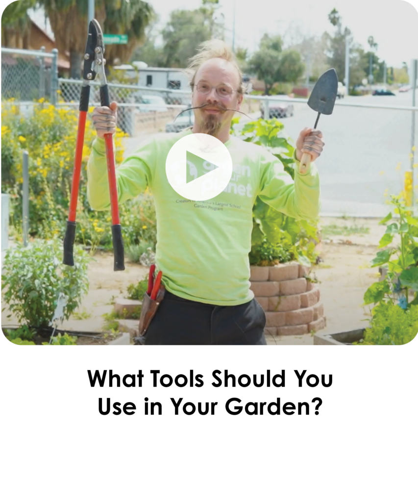 What Tools Should You Use in Your Garden