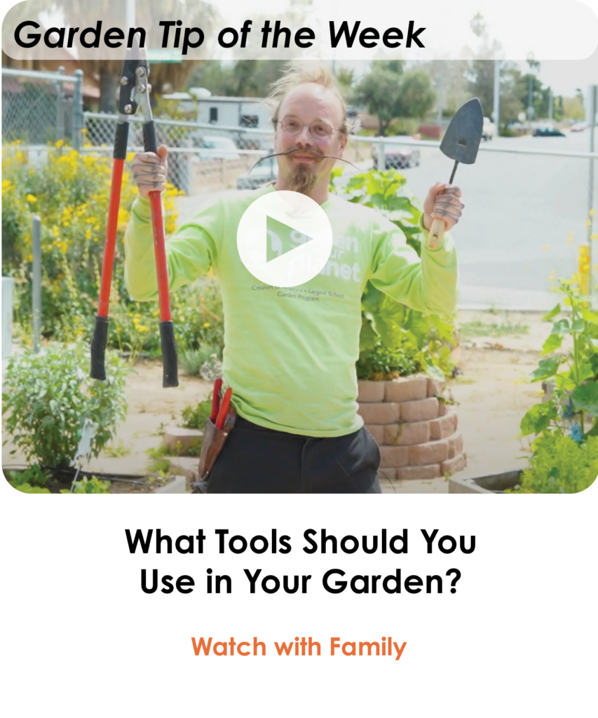 What-Tools-Should-You-Use-in-Your-Garden-Lesson-of-the-Week