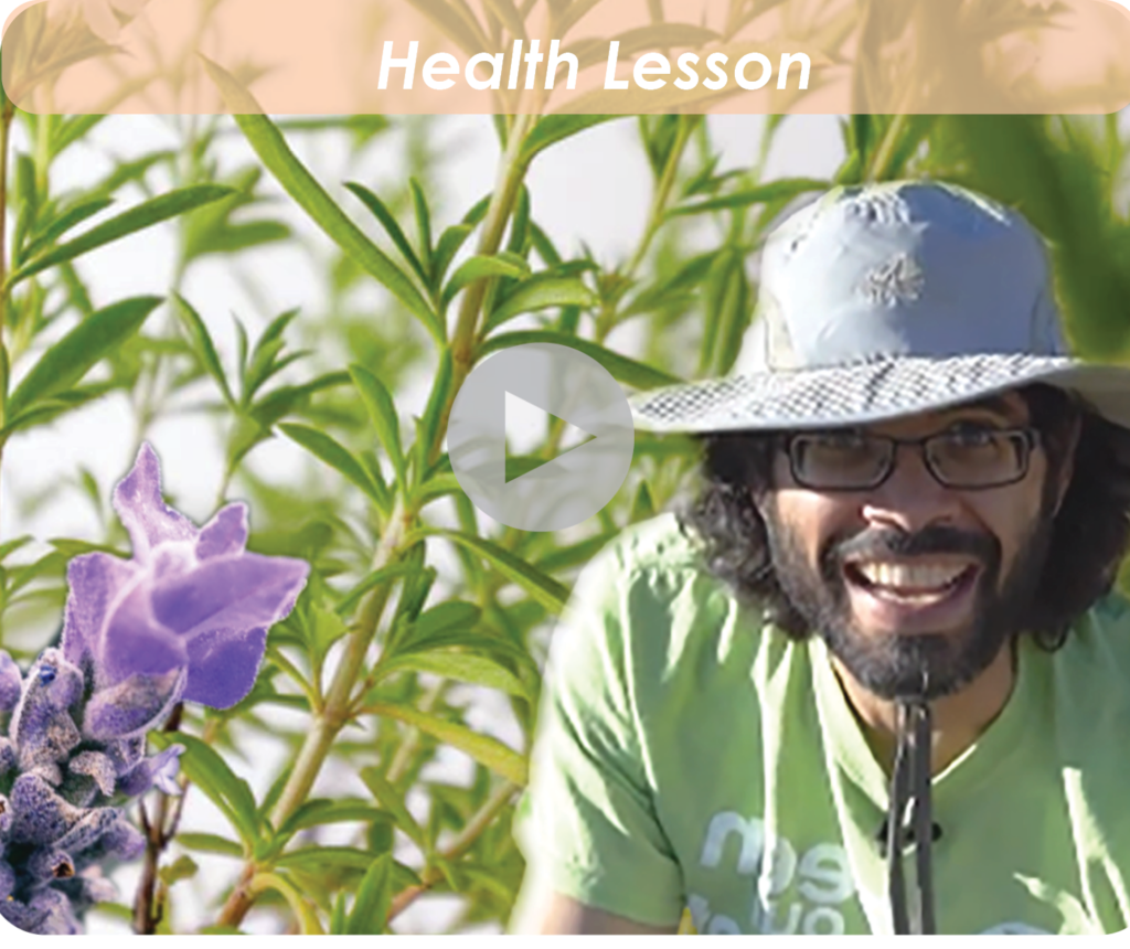 4.2 What Are Medicinal Plants with Farmer Joe - WEBSITE (1) (2)