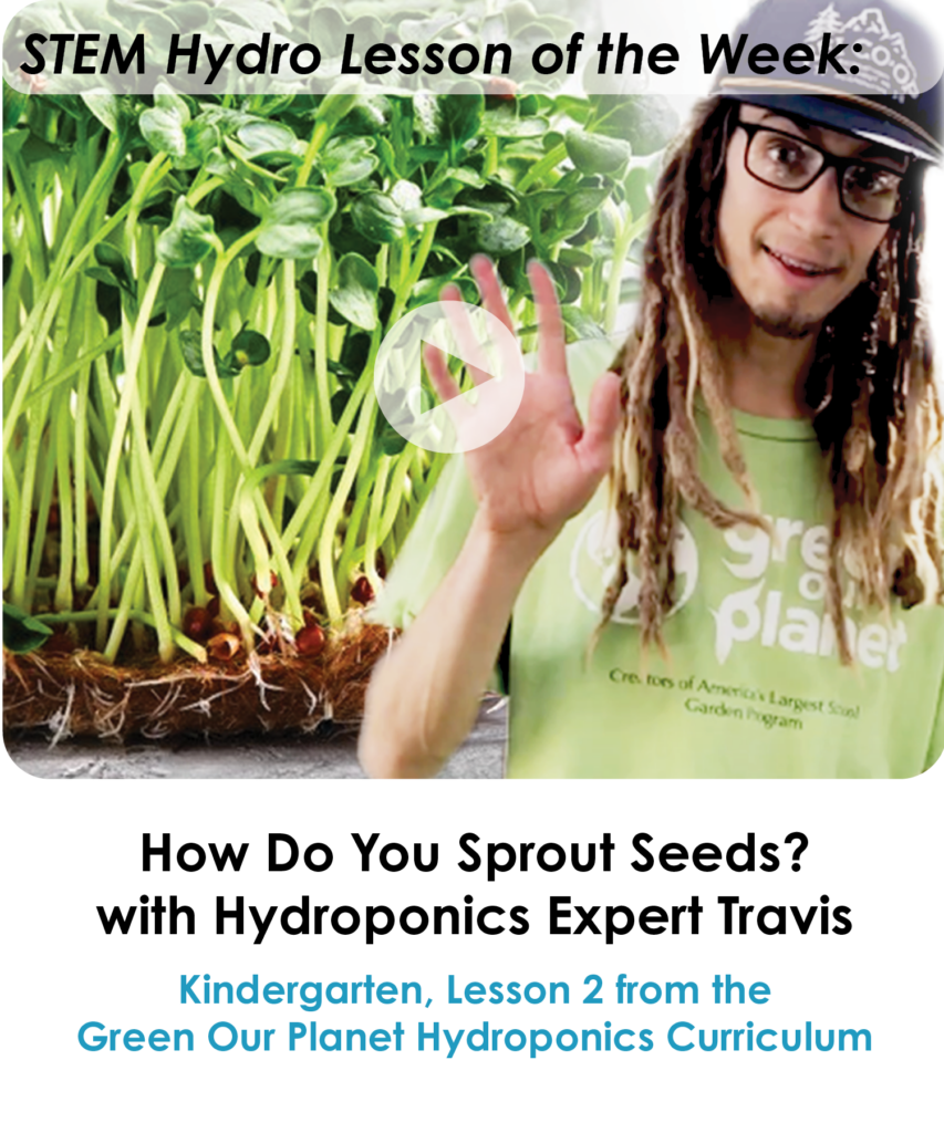 How Do You Sprout Seeds with Hydroponics Expert Travis - NEWSLETTER
