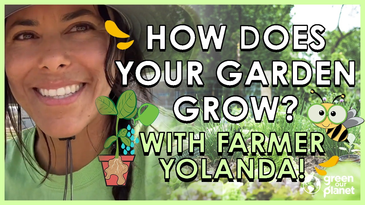 How Does Your Garden Grow with Farmer Yolanda