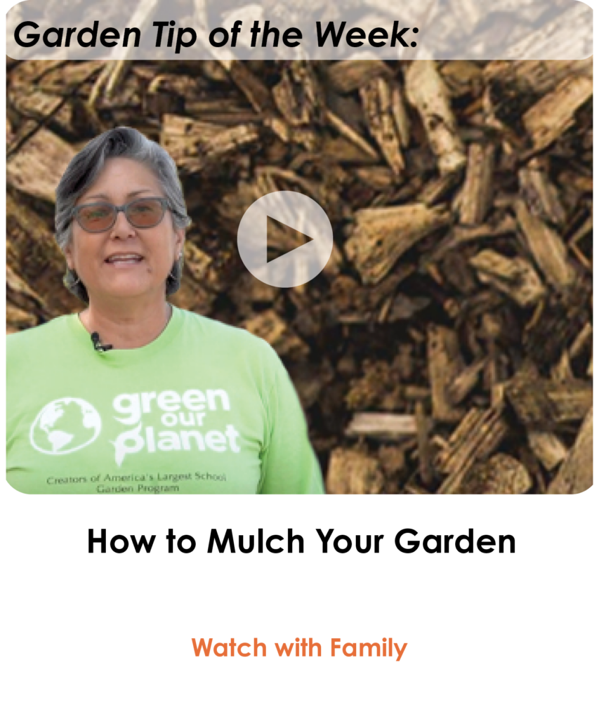 How to Mulch Your Garden - NEWSLETTER