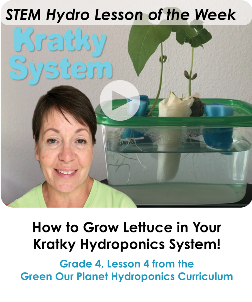 4.4 Grow Lettuce in Your Kratky System (Lesson of the Week) (1)