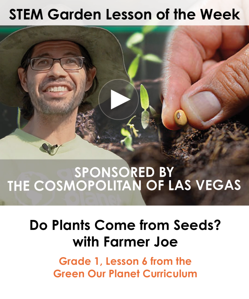 Do Plants Come From Seeds- with Farmer Joe - NEWSLETTER (1)