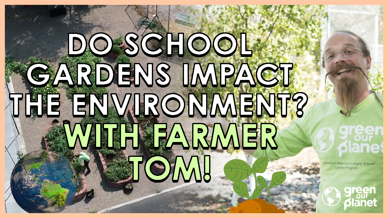 Do School Gardens Impact the environment with Farmer Tom (1)