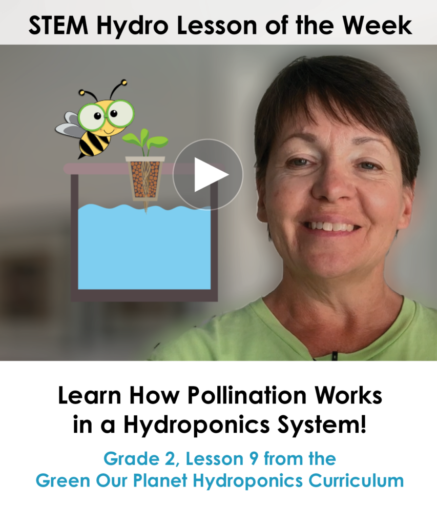 Learn How To Pollinate Planets in a Hydroponic System - mailchimp