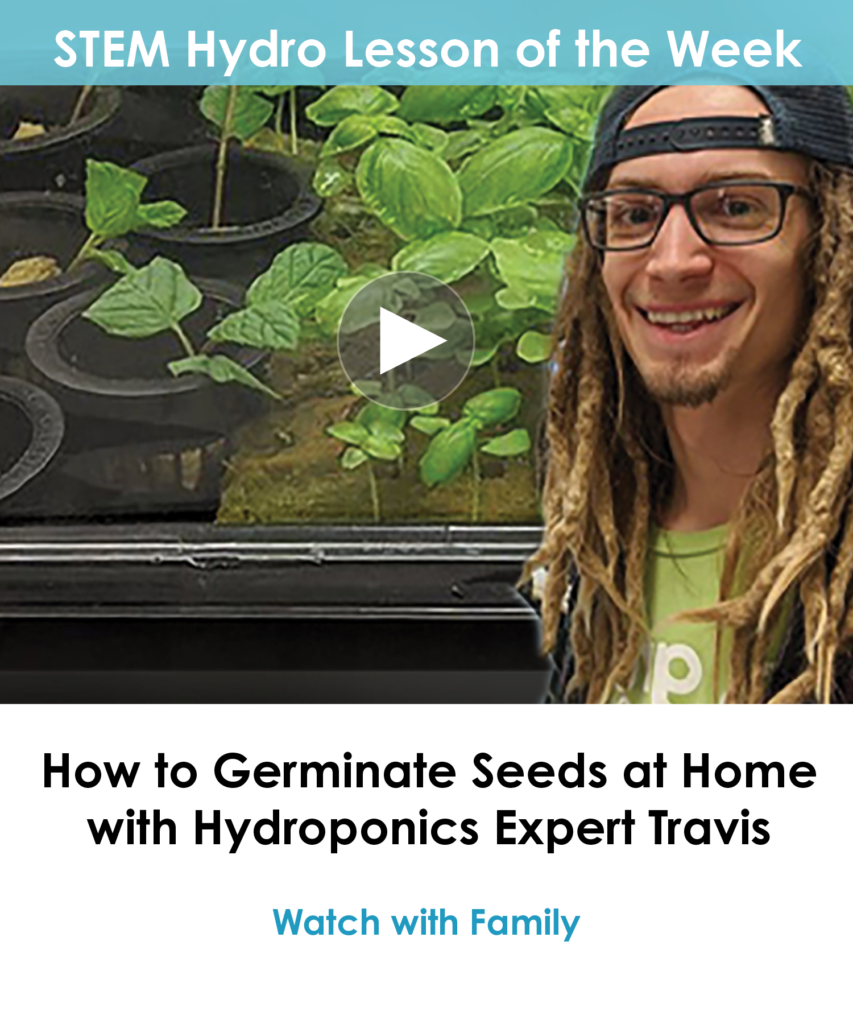 mailchimp'How to Germinate Seeds at Home with Hydroponics Expert Travis